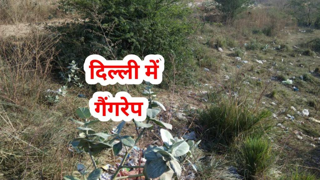 Rohini Rape Spot Image