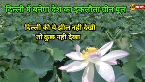 Yamuna Biodiversity Park Lake Delhi